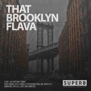 Boom Bap Hip Hop Drum Kit Superb Sound